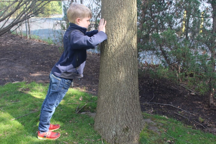 Child doing standing pushup on tree looking at space between hands.